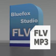 FLV to MP3 Converter, Convert FLV to MP3, FLV Video to MP3, FLV Converter to MP3