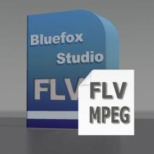 FLV to MPEG Converter, Convert FLV to MPEG, FLV to MPEG Video, FLV Converter to MPEG