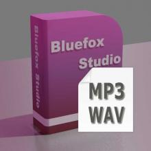 It can convert MP3 to WAV and WAV to MP3.