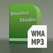 It can convert audio from WMA to MP3.